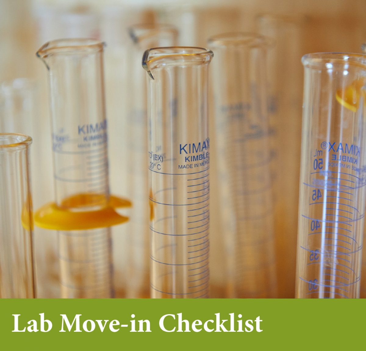 Lab Move-in Checklist
