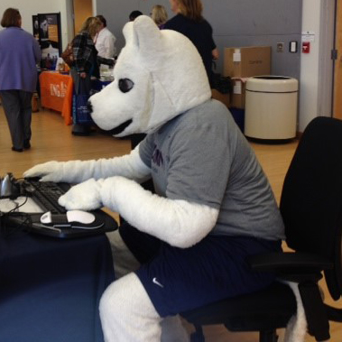 Husky mascot sitting typing at a computer