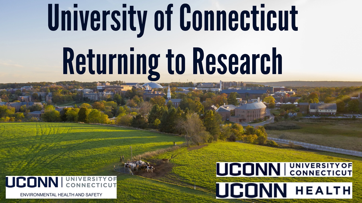 University of Connecticut Returning to Research
