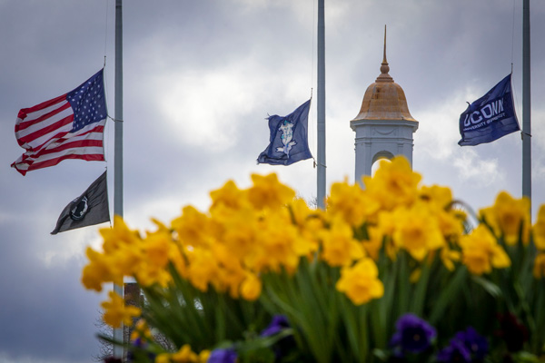 photo of Wilbur Cross with the flags on the Great Lawn