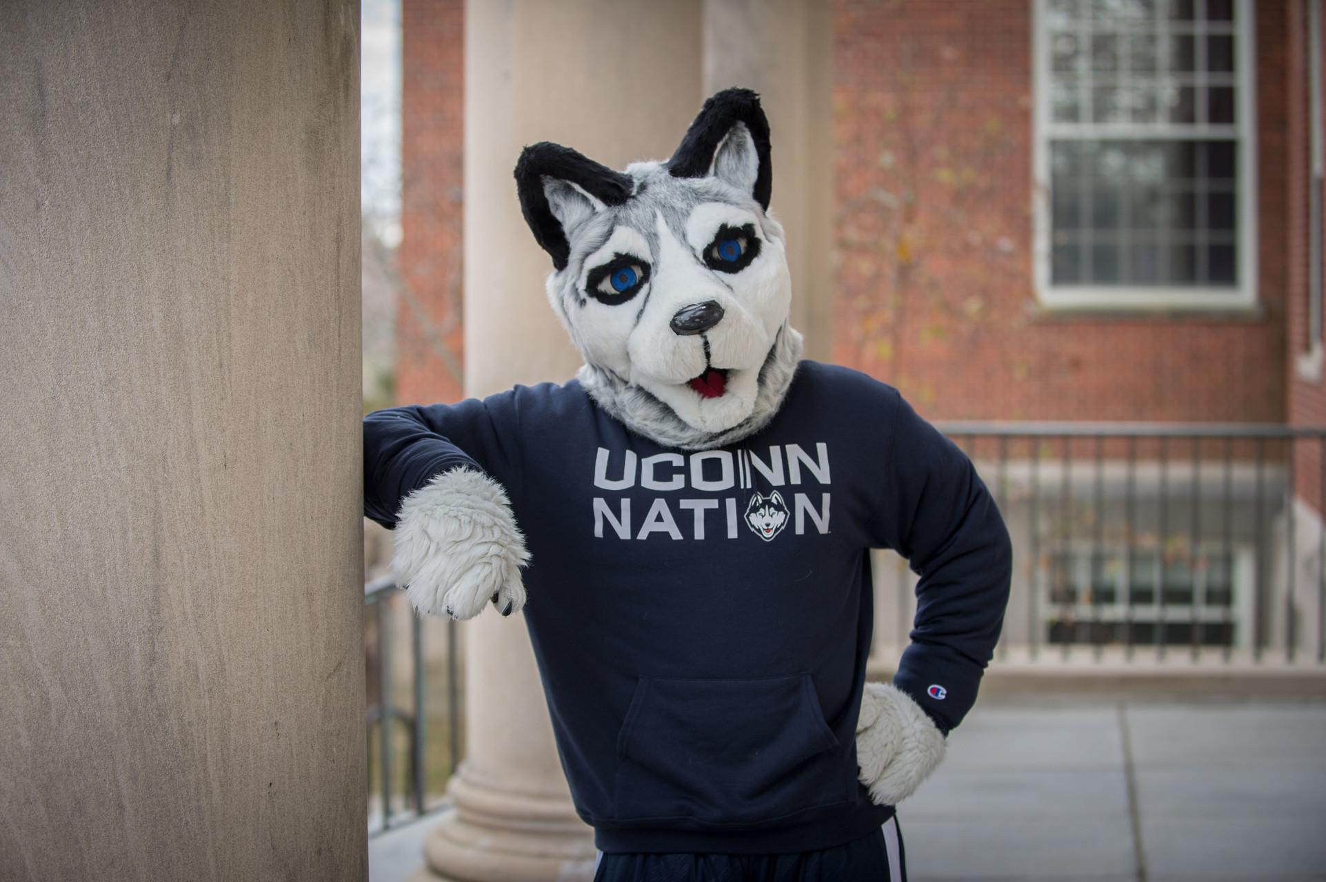 Jonathan Husky Mascot in navy blue UConn Nation Shirt
