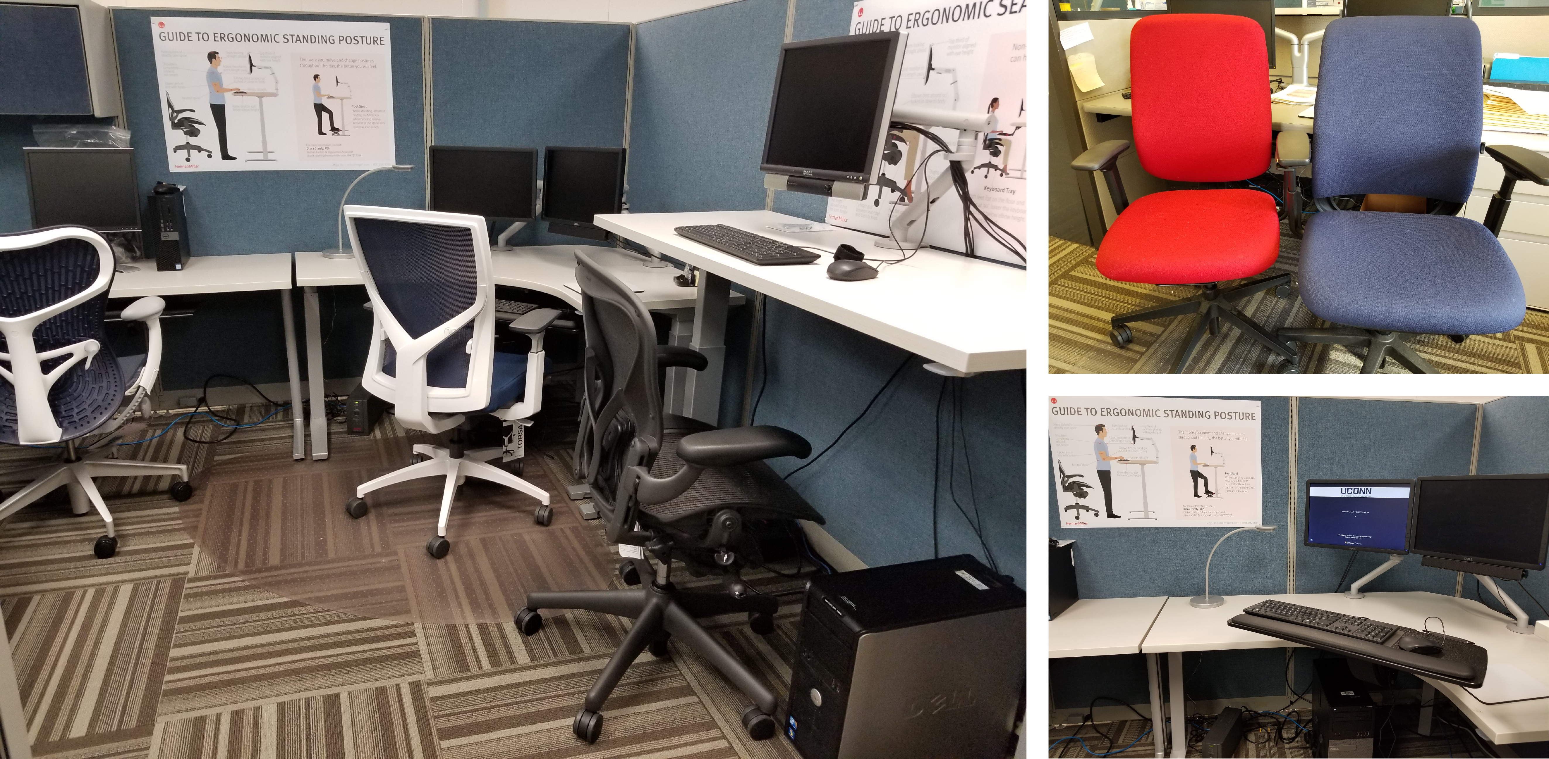 Ergonomic Demo Station in EHS Office - OFI Products: Three Workstations
